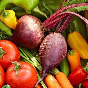 veggie garden square harvest