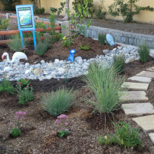 MBFL demo garden